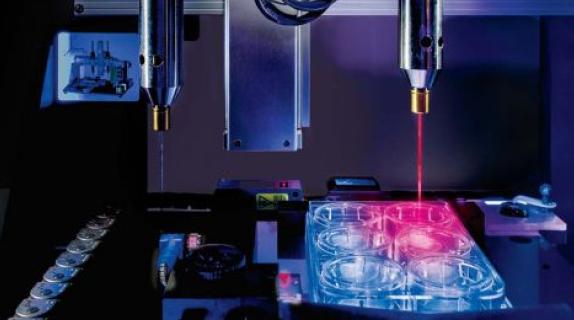 Quais são as empresas de bioimpressão 3D do Brasil?